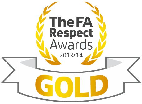 Respect Awards_Gold_2014 web